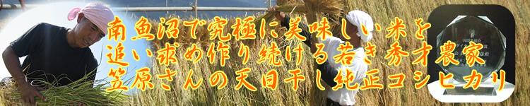 笠原さんの新潟県南魚沼産天日干し有機純正コシヒカリ